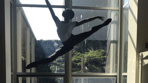 Gender Fluid Ideology Meets Dance World: Male Ballet Dancer to Take Female Roles