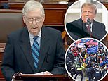 Mitch McConnell says Donald Trump 'PROVOKED' the MAGA riot in dramatic denunciation of president