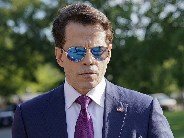 Scaramucci: Trump Is the 'Domestic Terrorist of the 21st Century,' Like Timothy McVeigh