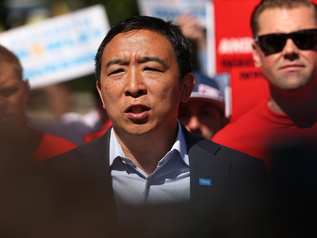 Survey Shows Andrew Yang Trails in NYC Mayoral Race